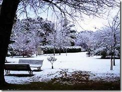 paisaje-nevado