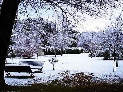 Sólo en el jardín del gigante egoísta continuaba siendo invierno.