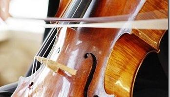 violonchelo1