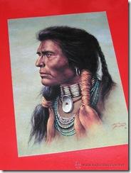 guerrero indio