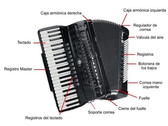 partes del acordeon
