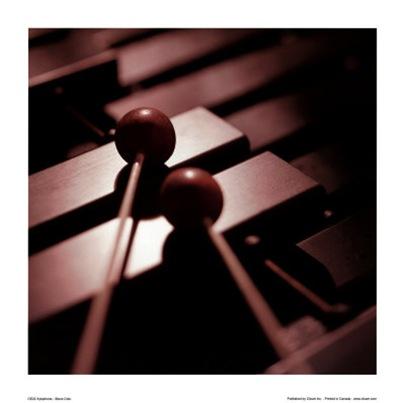 xilofono1