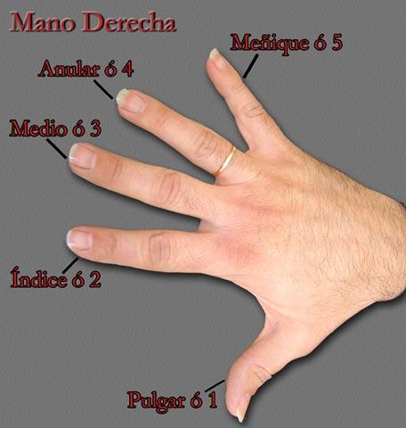 Por qu el anillo de matrimonio se pone en el dedo anular for En que mano se usa el anillo de compromiso
