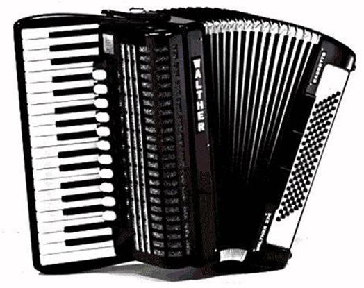 acordeon-en-muy-buen-estado-17997