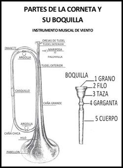 partes_corneta