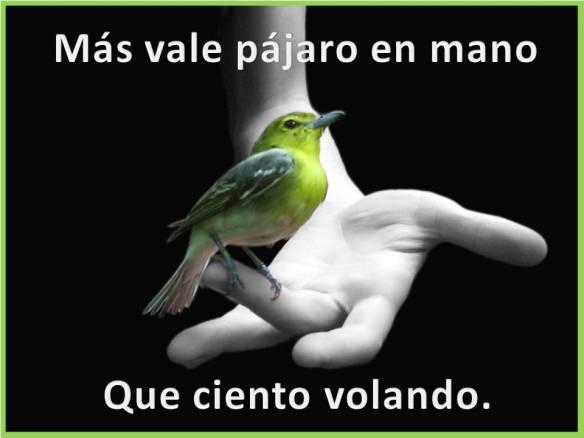 Más vale pájaro en mano que ciento volando
