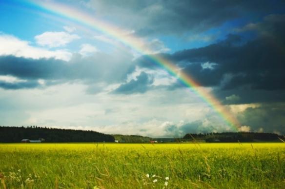 arcoiriss