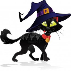 15340117-black-terrible-witch-halloween-cat