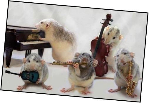ratitas-musicas