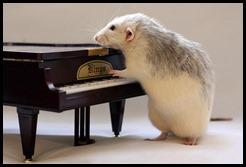 ratón piano