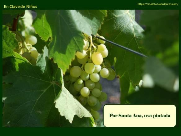 Por Santa Ana, uva pintada