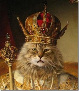 El-gato-rey