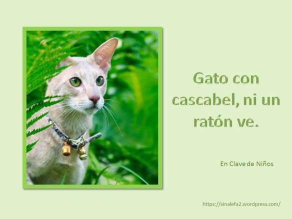 Gato con cascabel, ni un ratón ve