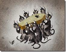rey de los gatos 1
