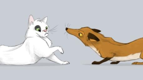 zorra y gato