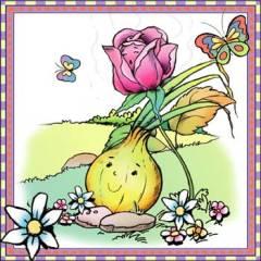 cebolla y rosa
