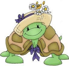 tortuga con sombrero
