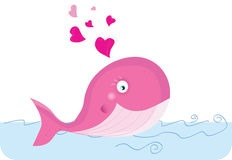 ballena rosa 1