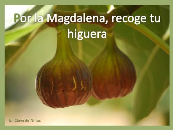 Por la Magdalena, recoge tu higuera